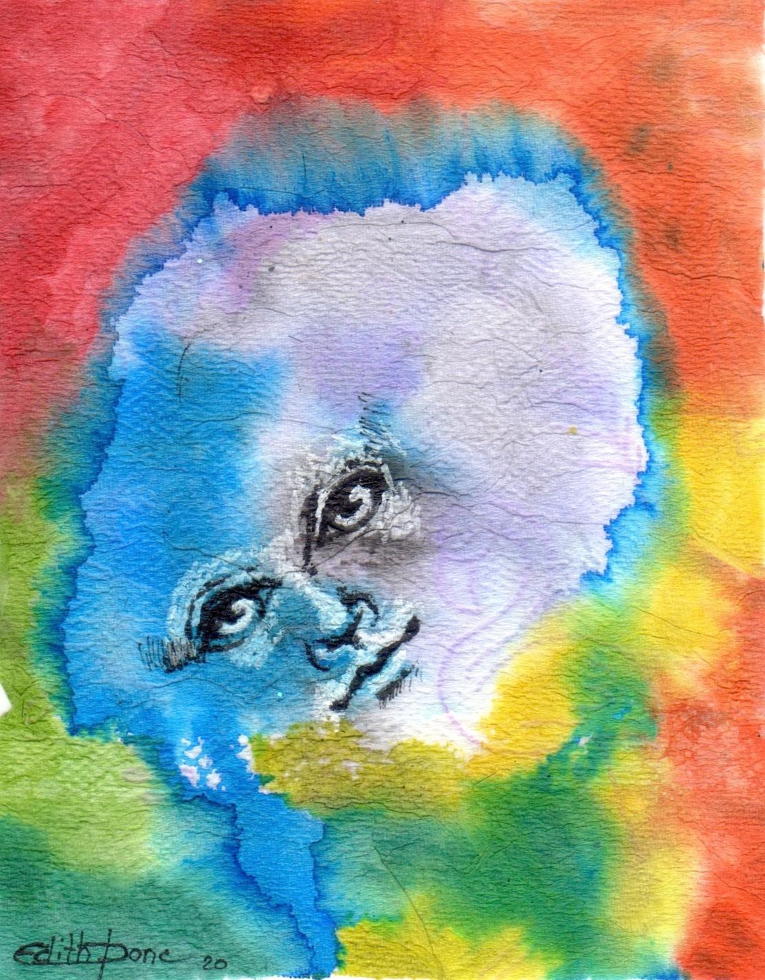 Edith Donc - La tête dans les nuages