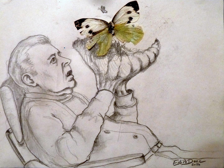 Edith Donc - L'effet papillon
